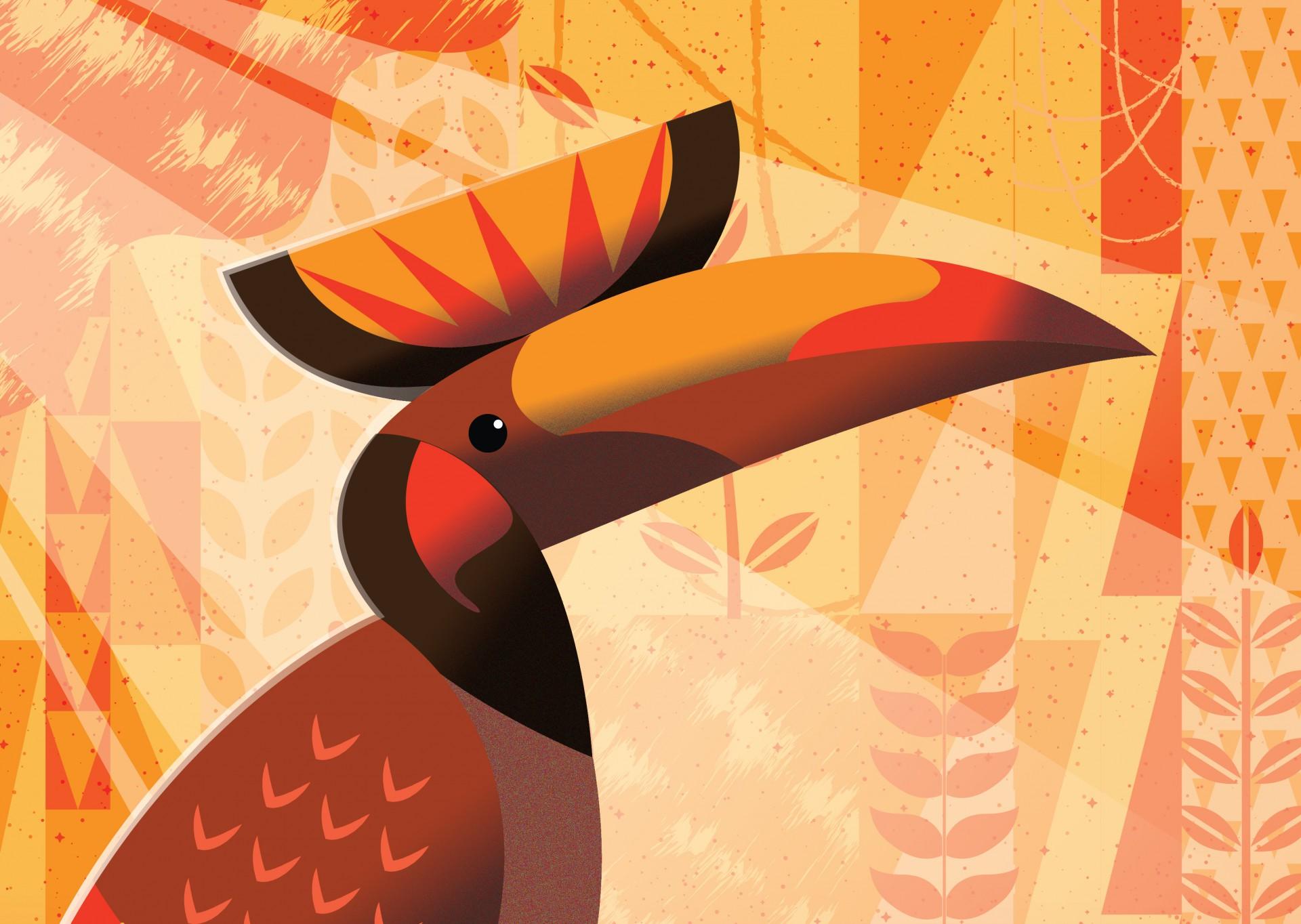 أدوبي إلستريتر | Adobe illustrator